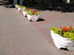 Цветочные вазоны на Приморском бульваре