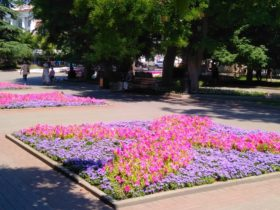 Цветники у театра Луначарского